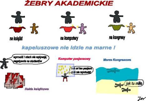 zebry akademickie